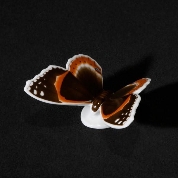 """Porzellanfigur """"Schmetterling Admiral"""" aus glasiertem Porzellan, farbig dekoriert"""