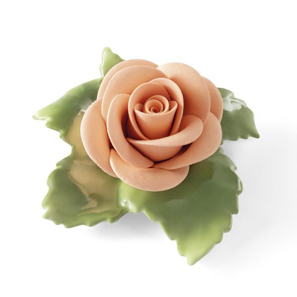 Rose (lachs)